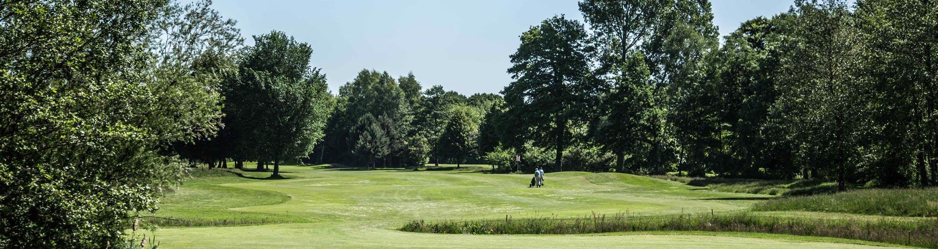 golfeinstieg_3
